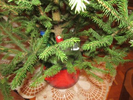 как поставить елку дома