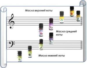 ноты ароматов