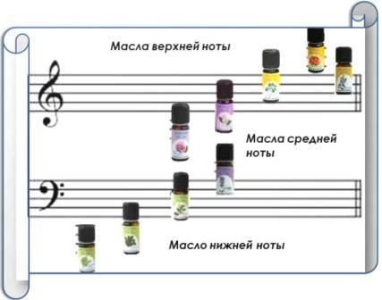 ноты запахов