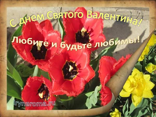 с днем святого валентина открытка