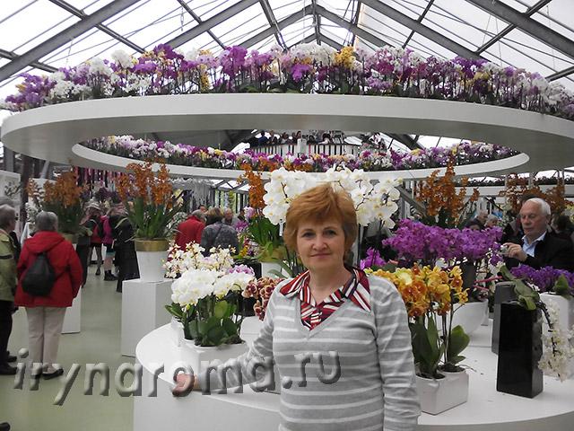 павильон орхидей Веатрикс