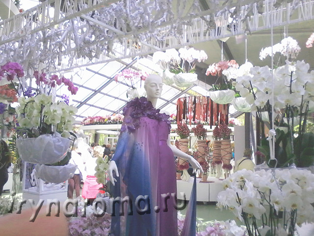 Павильон орхидей Беатрикс