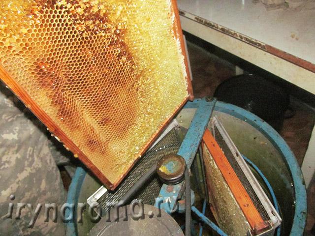 как откачивают мед