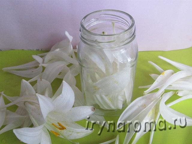 настойка из лепестков белой лилии
